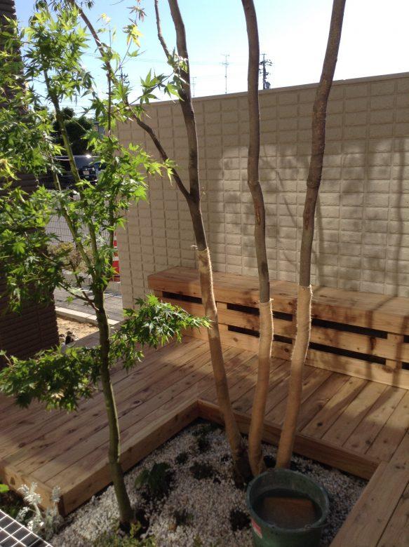 サイプレスウッドデッキと植栽